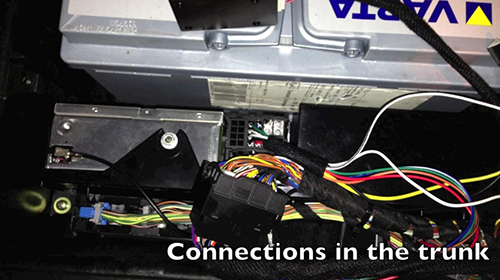 connections in the trunk